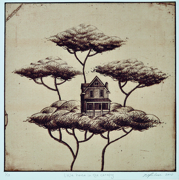 Little House in the Canopy - 2010